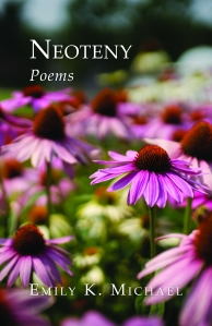 Book cover features title in white lettering against a background of pink, green, and burgundy abstract flowers.